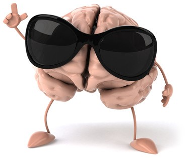 Brein kracht